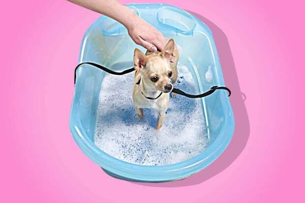 Держатель для купания игрушки для животных, коты, собаки