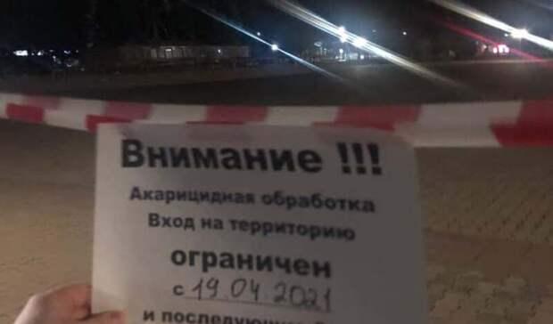 Накануне акции «Свободу Навальному» в20 городах прошли задержания