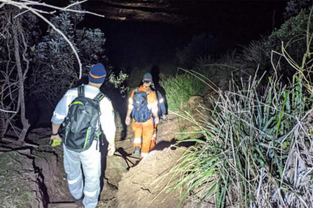 Австралийские нудисты испугались оленя и заблудились в лесу