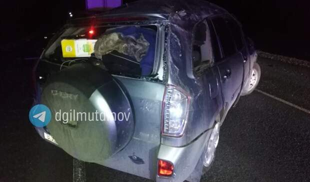 Один погиб и14 пострадали: вГИБДД Башкирии сообщили подробности смертельного ДТП