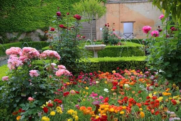 Мусульманский стиль сада — строгость линий и роскошь растений