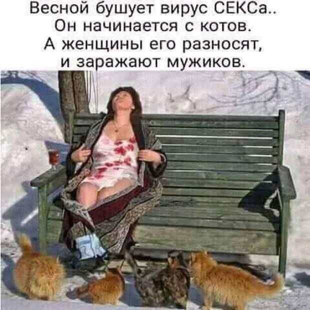 Дальновидный отец семейства никогда не едет сразу к месту отдыха...