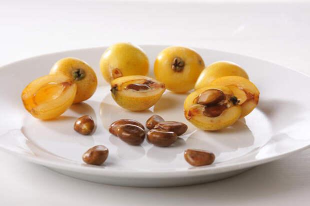 Каждый плод мушмулы японской содержит 3-4 крупные косточки