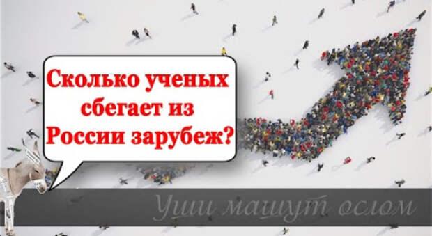 Сколько ученых сбегает из России зарубеж? | Уши машут ослом (92)