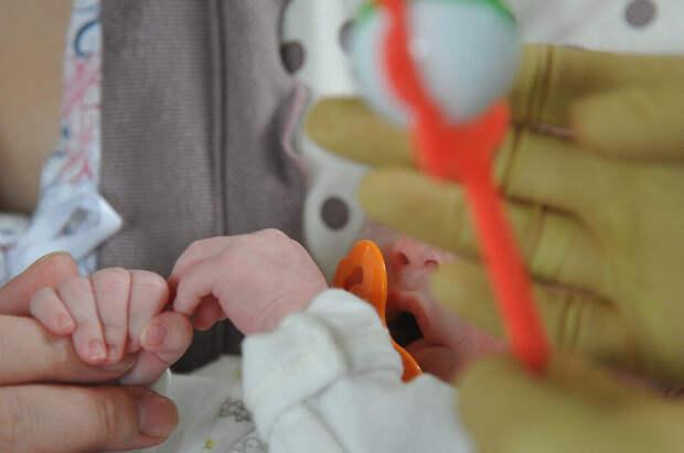 Медики больницы в Туле оставили ребёнка в кишащей насекомыми палате