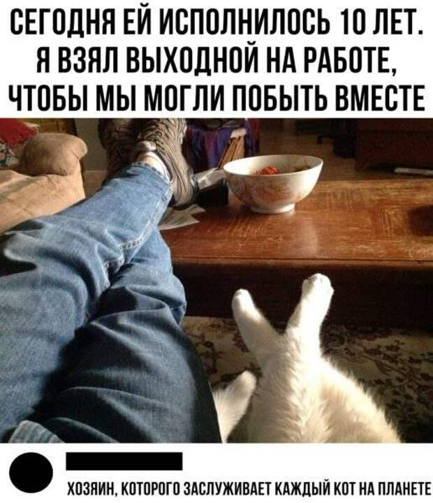 Солянка юмора из сети №2