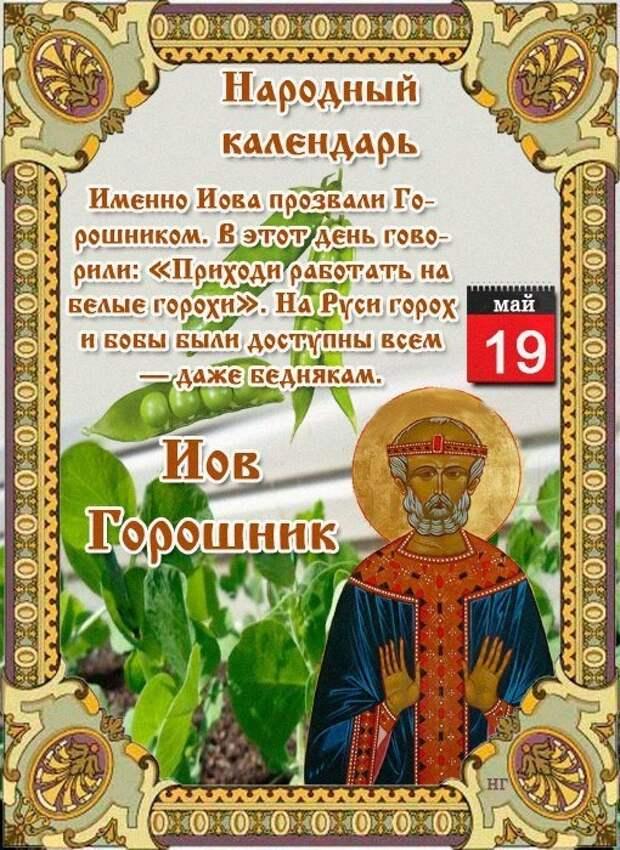 19 мая - Народно-христианский праздник Иов Горошник.