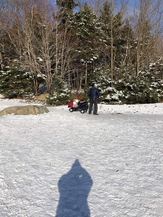 Мужчина катил по парку тележку с собакой, укутанной в одеяло. Она больна и не может ходить
