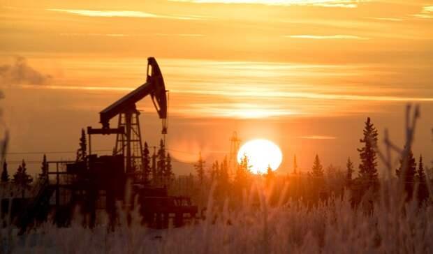 СПсоздали «Газпром» иЛУКОЙЛ для разработки двух месторождений вНАО