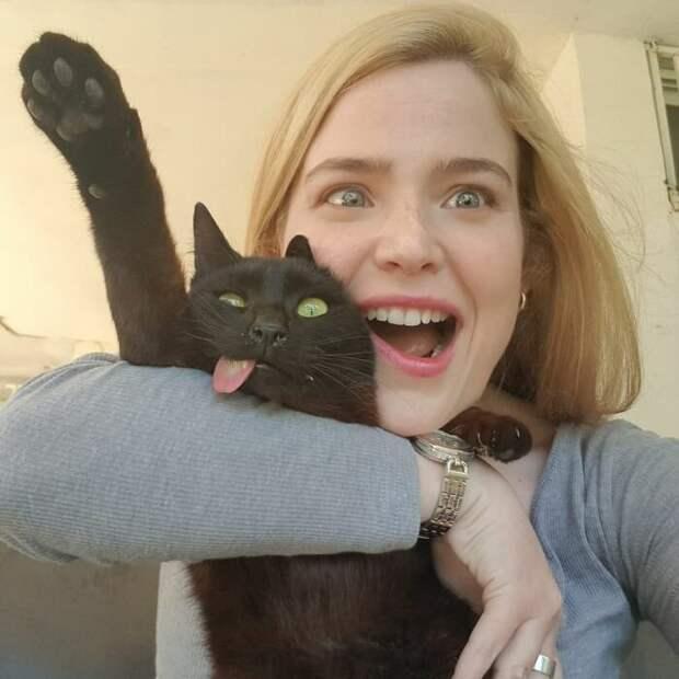 Пушистая любовь: как спасенный кот Цимес с высунутым языком обрел семью
