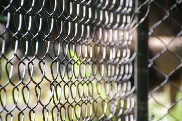 До 80 лет тюрьмы грозит в США россиянину Буркову за киберпреступления