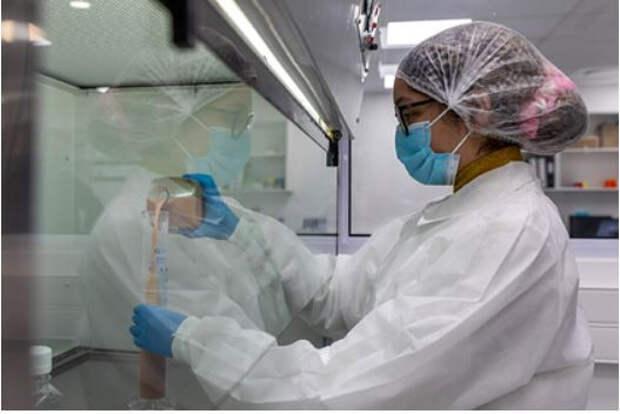 Терапевт предупредил об опасности нового андского штамма коронавируса