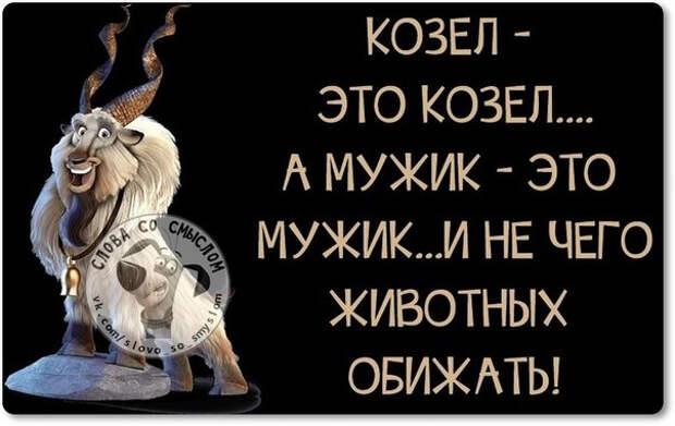 1421603191_frazki-24 (604x381, 149Kb)