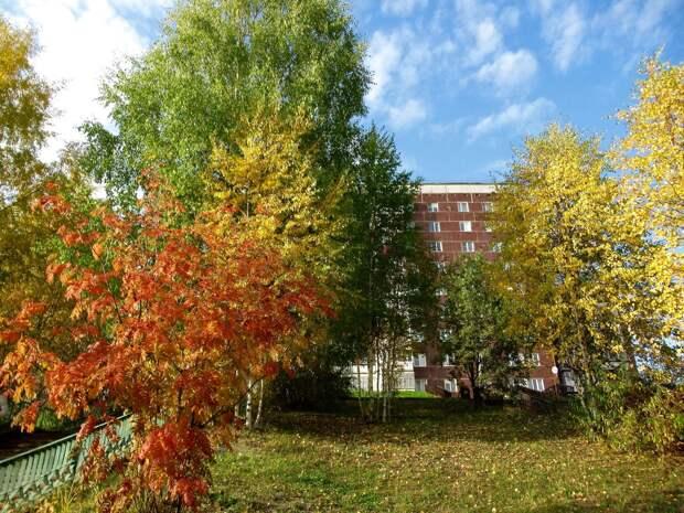 Красоты России (#589)