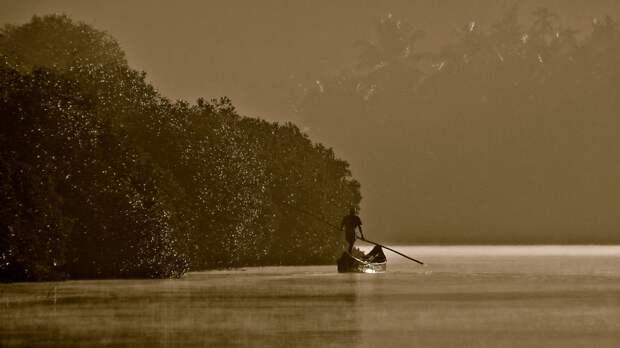 Рыбак в мангровом лесу в штате Керала в Индии. «Люди и природа», первое место / Nibedita Mukherjee