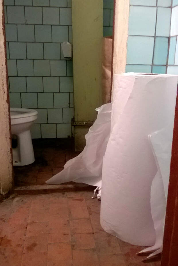 Рулон туалетной бумаги.