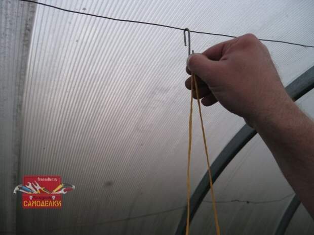 Подвязка огурцов своими руками
