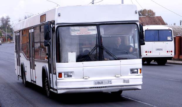 Орал как перепуганный: водитель автобуса устроил скандал из-за оплаты воВладивостоке