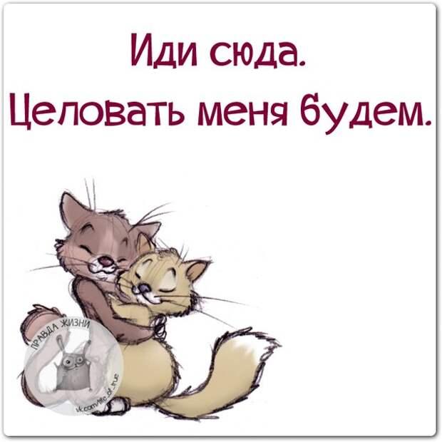 5672049_1416858598_frazki3 (604x604, 48Kb)