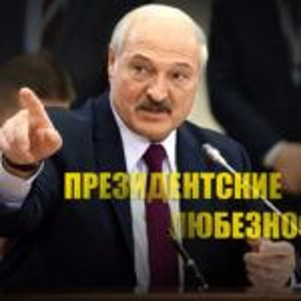 «Чьябы корова мычала»: Лукашенко жестко высказался в адрес президента Украины Зеленского. ВИДЕО