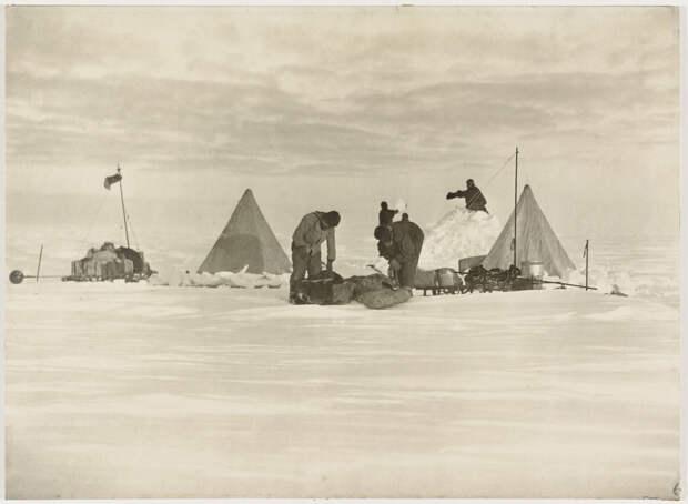 Первая Австралийская антарктическая экспедиция в фотографиях Фрэнка Хёрли 1911-1914 4