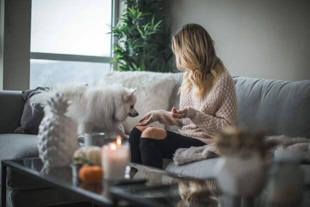 Как сделать так, чтобы в квартире всегда хорошо пахло