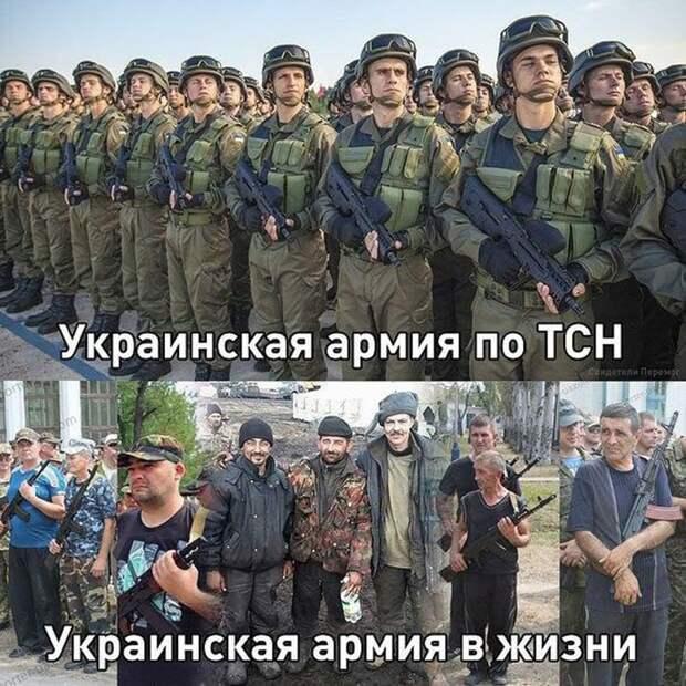 Новости стационара:Киев зашипел по Змеиному!