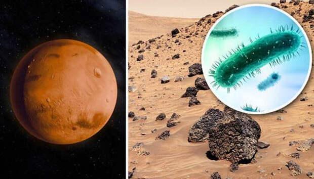Марс, curiosity, марсоход, космос