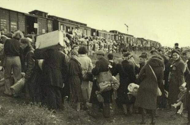 Для каждого народа разрабатывались свои условия депортации.