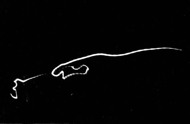 Версия: НЛО как живые разумные существа из других миров