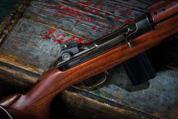На охоте в Забайкалье егерь застрелил генерала