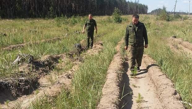 Военные и гражданские лесники в Подмосковье будут противостоять пожарам сообща