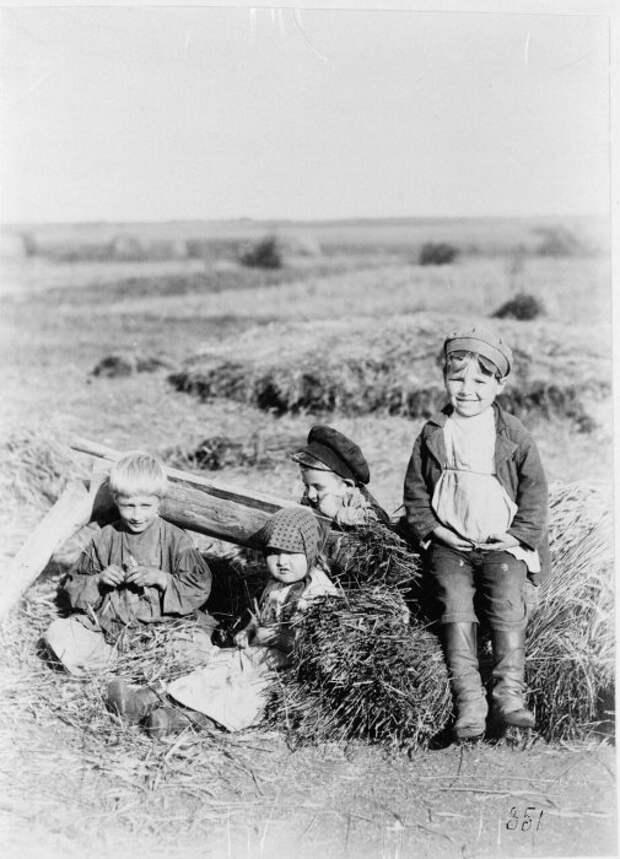 Дети гуляют в поле после жатвы.