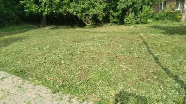 Дом на Ленинградке был освобожден от зарослей травы под окнами