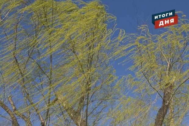 Итоги дня: новые остановки в Ижевске, помощь зоопарку и усиление ветра в Удмуртии