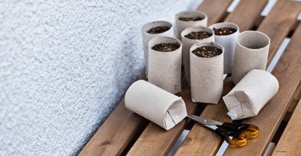 Втулки от туалетной бумаги не мусор, а поле для творчества. Не спеши их выбрасывать!