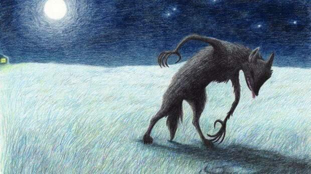 Странная тощая черная собака ходила как человек (2 фото)