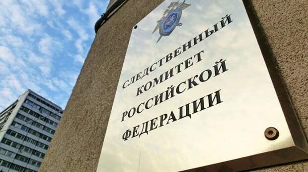 СК возбудил дело после нападения радикалов на посольство России в Киеве
