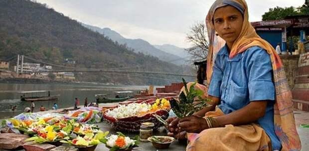 Частный взгляд на вегетарианство вегетарианцы, жизнь, индия, люди