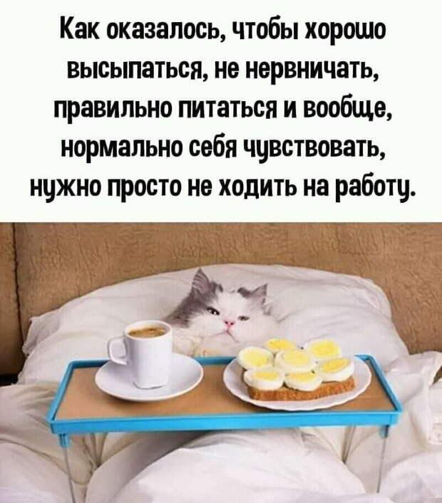 Старого летчика спрашивают: — Петрович, тебе же 65, слепой, глухой, как же ты летаешь?...