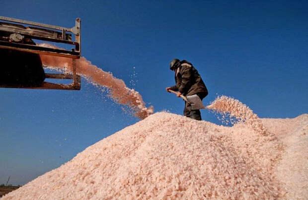 Розовая соль озера Сиваш.