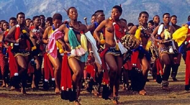 Парад девственниц: Как африканский монарх из 70 тысяч претенденток раз в год королеву выбирает