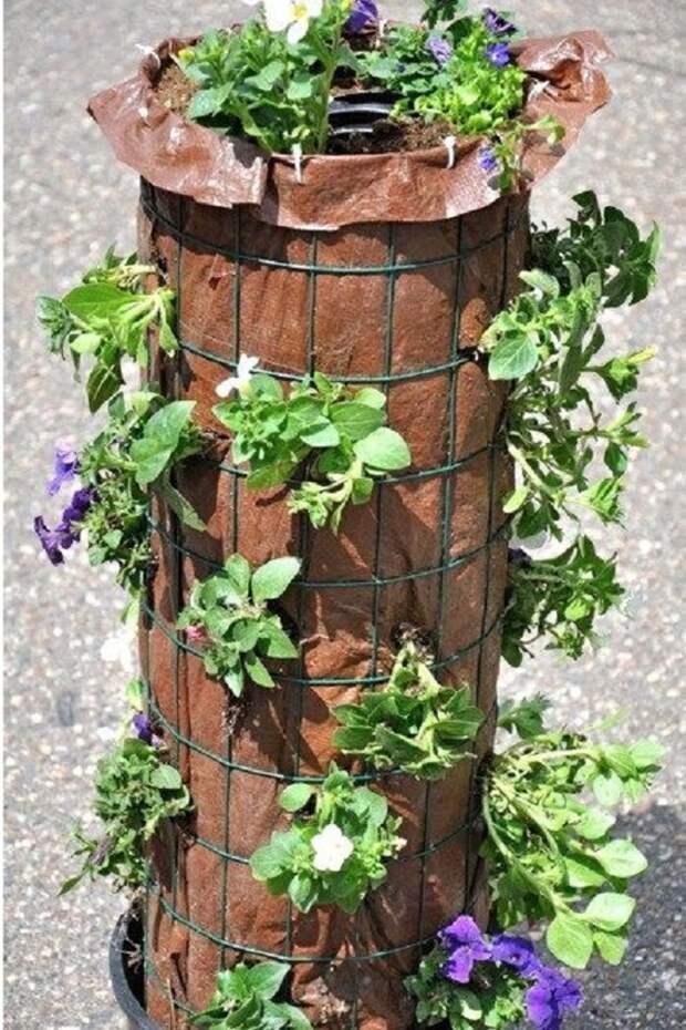Секрет великолепия цветущего столба: вертикальная клумба своими руками