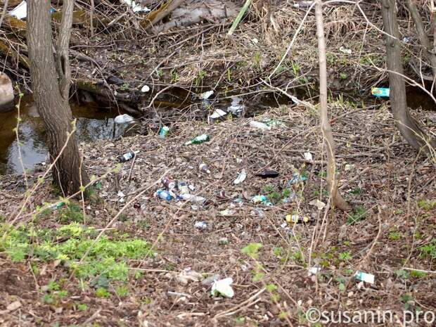 С улиц Ижевска начали убирать мусор и смет