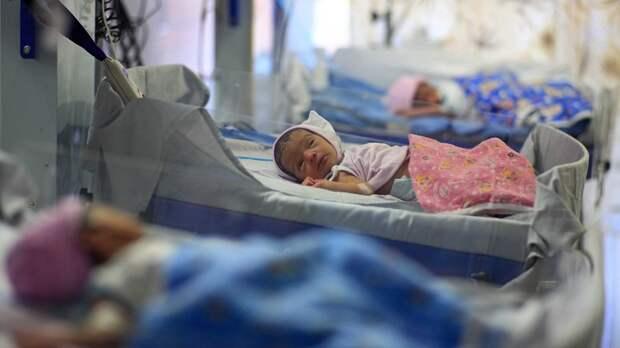 Младенцы для Кастро: Что стоит за громким делом о торговле русскими детьми