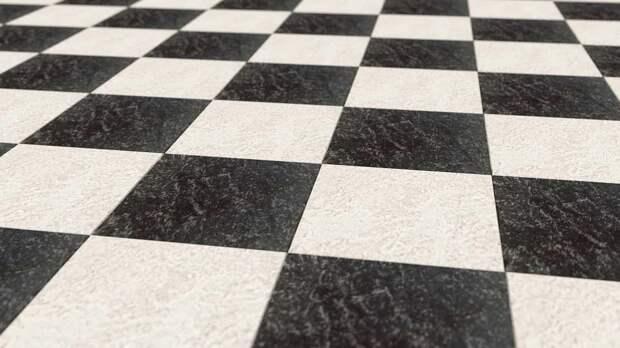 В Свиблове завершился отборочный тур первенства России по русским шахматам