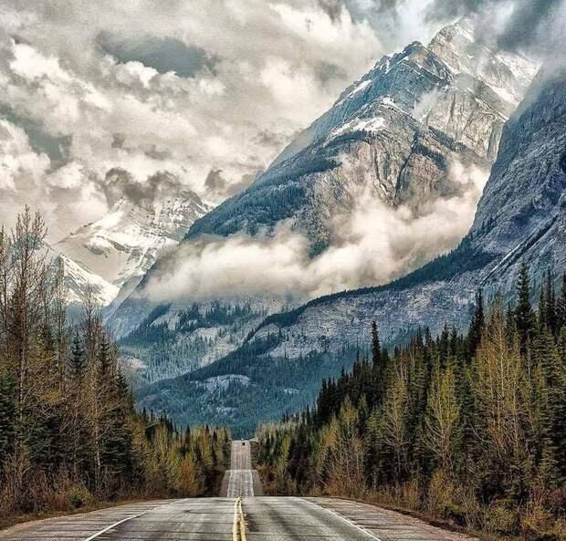 Дорога по которой можно ехать вечно