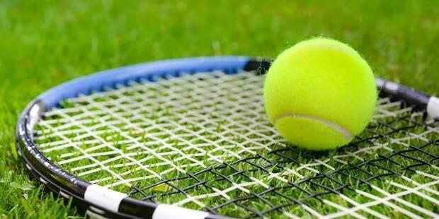 Теннисистка Звонарева обыграла соперницу
