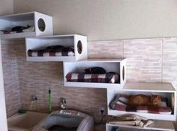 Спаленки для кошек (подборка)