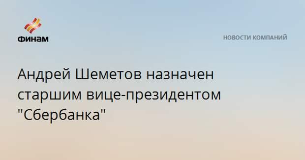 """Андрей Шеметов назначен старшим вице-президентом """"Сбербанка"""""""